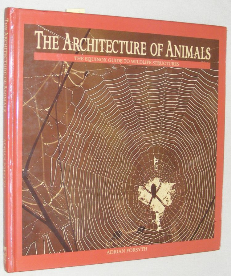 Image for The Architecture of Animals: the Equinox guide to wildlife structures