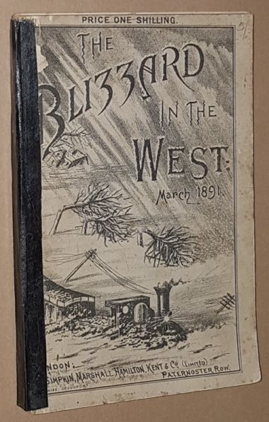 Image for The Blizzard in the West: being a record and story of the disastrous storm which raged throughout Devon and Cornwall, and West Somerset, on the night of March 9th, 1891