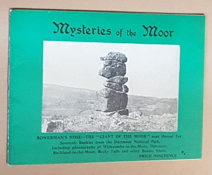 Image for Mysteries of the Moor