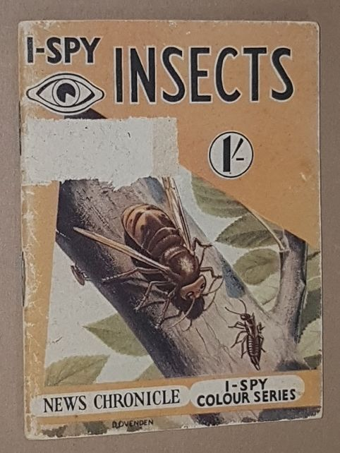 Image for I-Spy Insects