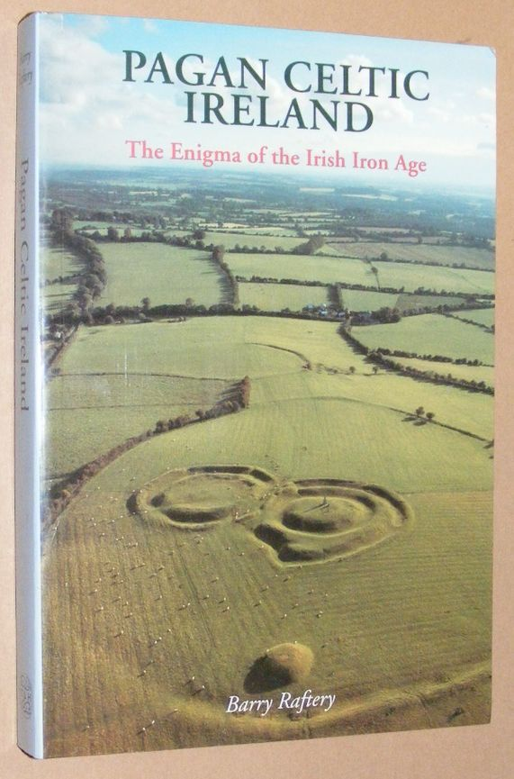Image for Pagan Celtic Ireland: the enigma of the Irish Iron Age