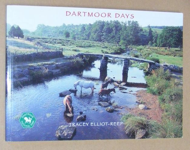 Image for Dartmoor Days
