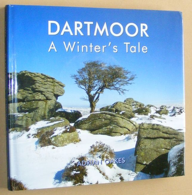 Image for Dartmoor: a winter's tale