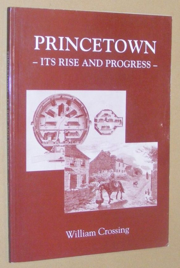 Image for Princetown: its rise and progress